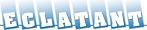 Eclatant Schoonmaakbedrijf portal